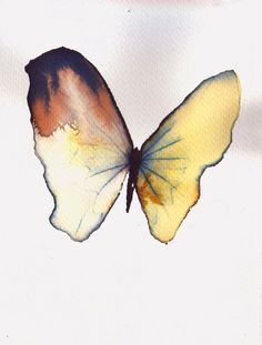 pale yellow butterfly with rust brown wing. original watercolour painting.