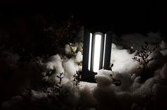 차가운 불빛
