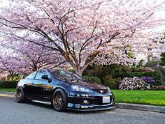 RSX in Spring #RSX #DC5 #AcuraRsx #sportscars