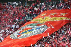 Benfica regressa ao trabalho com 30 futebolistas Benfica Wallpaper, Big Love, Football Fans, Sad, Sports, Expresso, Boys, Mole, Soccer
