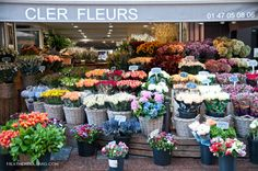 Cler Fleurs  Located on Rue Cler in the 7th in Paris