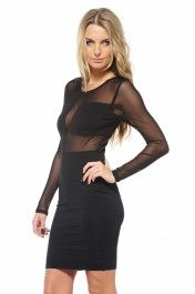 Mesh Long Sleeve Fitted Dress