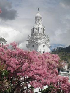 Quito, la catedral