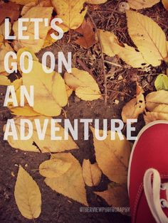 """""""Let's go on an adventure"""" :) #OtherViewPhotography #quotes #fall #photography"""