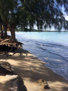 Dorado, Puerto Rico Las playas de mi patria...