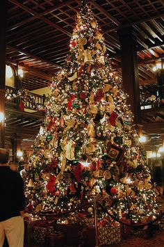 Hotel Del Coronado at Christmas Hotel Del Coronado Christmas Tree by Jim Epler, via Flickr