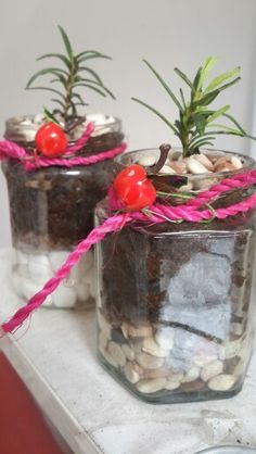 Rosemary in jar
