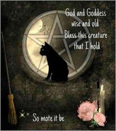 """Bendicion para animalitos. """"Dios y Diosa sabios y ancestrales bendigan a esta criatura que sostengo"""""""