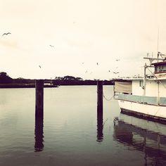 ++ photograph . leah / sang the bird