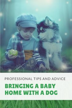 Tips and advice on preparing your dog and home for a new baby. Practical things to implement and think about at any point in the family planning stage.