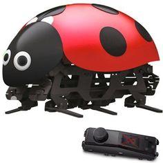 Ladybug RC Cars DIY Kits Radio Control Cartoon Toys for Kids With Remote Control