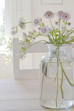8 Far-Sighted Tips AND Tricks: Pottery Vases Studios large vases styling.Black Geometric Vases decorative vases with flowers.Paper Vases Tin Cans. Simple Flowers, Fresh Flowers, Wild Flowers, Beautiful Flowers, Flower Power, My Flower, Deco Floral, Vase Shapes, Cool Ideas