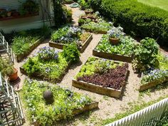 I love the mix of veggies and flowers.  Something similar in my side yard.