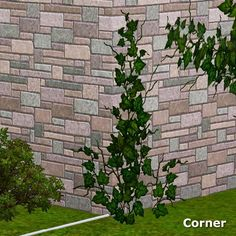 A new Wall ivy set 2 found under Decor / Plants, all cost 0. The set consists of 4 types:  1 x corner unit  1 x spread out unit  1 x mixed u...