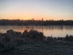 Sunrise at lake Jan 20