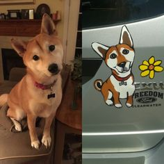 CUSTOM Dog Car Magnet by IttyBittyBarkers on Etsy
