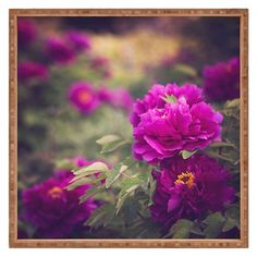 Catherine McDonald Peony Garden At Dayan Pagoda Square Tray - Purple