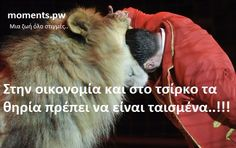 In economy and in the circus the beasts must have been fed..!!!  Στην οικονομία και στο τσίρκο τα θηρία πρέπει να είναι ταισμένα..!!!