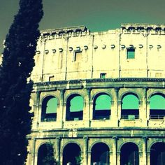 Coliseum. Rome, Italy