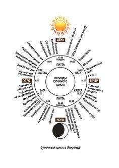 Суточный цикл в Аюрведе