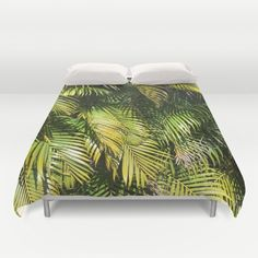 palm, tropical, green, plant...