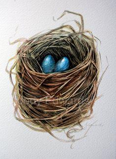 Bird Nest Two Eggs  Original Watercolor painting by jodyvanB