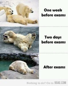 exams week, deff how i feel before and after.