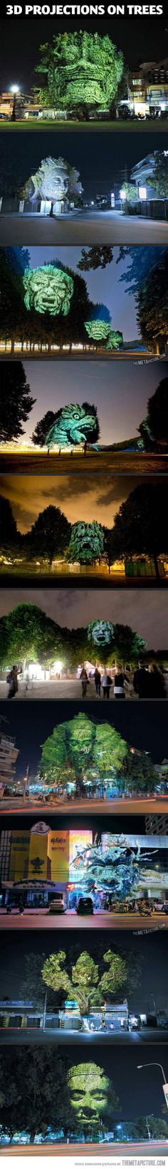 Projecting 3D faces on trees…