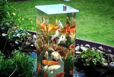 Koi pond tower!