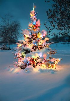 Christmas lights surrounded by a snowfall.