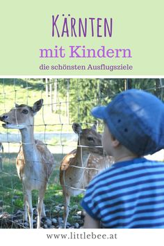 Kärnten mit Kindern - di schönsten Ausflugsziele rund um Wörthersee & Co zusammengefasst auf www.littlebee.at