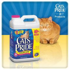 Cat's Pride scoopable litter - works great for our giant cat AND is MADE IN THE USA!