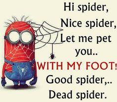 Hi spider