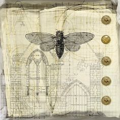 ./. Tricia McKellar's Plans and Diagrams Journal ./.