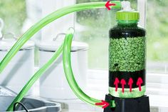 DIY Nitrate Filter / Reactor