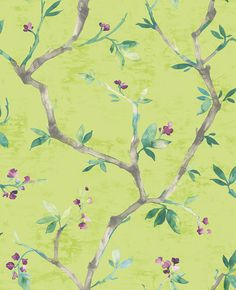 The home of bold & beautiful wallpaper in Australia. Shop over 9000 designs. Nature Wallpaper, Wall Wallpaper, Beautiful Wallpaper, Oriental Wallpaper, Minimalist Painting, Watercolor Effects, Chinoiserie, Trail, Hand Painted
