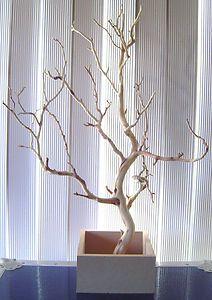 9. Ramas secas en base lista para decorar con flores