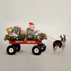 who needs reindeer!