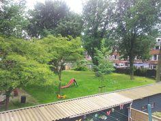 #101 #rotterdam #Nederland Zo weer een dag in mijn achtertuin