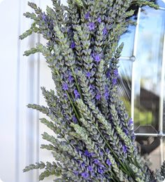 DIY:  Lavender Wreath - how to make your own. Clear instructions & pics.