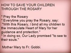 """Pray the Rosary. Every time you pray the rosary say """"with this rosary I bind all my children to the Immaculate Heart of Mary for her guidance and protection."""" In doing so our Lady promised """" to see to their souls"""". Mother Mary to Fr Gobbi Rosary Prayer, Praying The Rosary, Holy Rosary, Faith Prayer, My Prayer, Prayer Books, Catholic Beliefs, Catholic Quotes, Religious Quotes"""