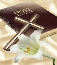 Genesis and the Holy Bible | colinanderson9494