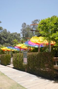 Rainbow umbrellas at the Malibu Cafe, Los Angeles.