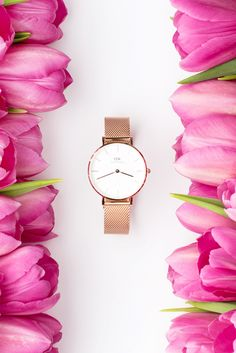 Styling and Product photography by Shay Cochrane for Daniel Wellington. Styling and Product photography by Shay Cochrane for Daniel Wellington. Watches Photography, Jewelry Photography, Fashion Photography, Flat Lay Photography, Commercial Photography, Product Photography, Photography Ideas, Flower Photography, Photography Women
