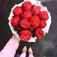 Find images and videos about flowers, red and rose on we heart it - the app to get lost in what you love. Flowers Nature, Fresh Flowers, Beautiful Flowers, Red Peonies, Luxury Flowers, Healthy Snacks For Kids, Flower Boxes, Planting Flowers, Floral Arrangements