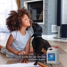 Animals For Kids, Pets, Children, Young Children, Boys, Kids, Child, Kids Part, Kid