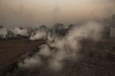Le foto di Daniel Berehulak, premio Pulitzer - Il Post