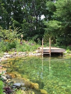 Love the natural surround of this pool and the dock - would need beach-style wade-in zone on one end