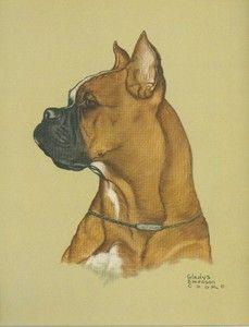 German Boxer Dogs | ... Emerson Cook Folio Print Boxer Vintage 12x16 Dog Illustration | eBay
