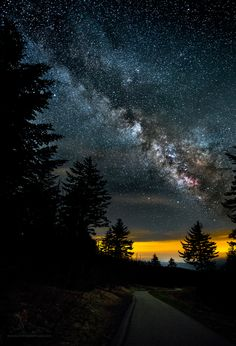 Jeff Stamer snapped this photo on the way to the observation tower at Clingmans Dome, in the Great Smoky Mountains National Park.<br />